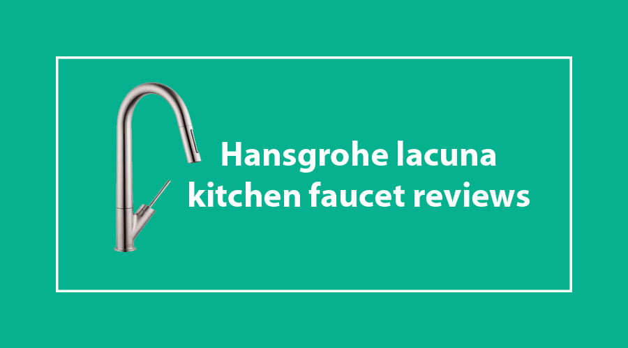 Hansgrohe Lacuna kitchen Faucet Reviews & Buying Guide ...